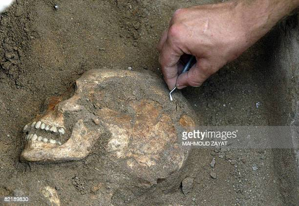 A British archeologist digs up a skeleton dating back to Canaanite era eighth millennium BC at an excavation site in the southern Lebanese port city...