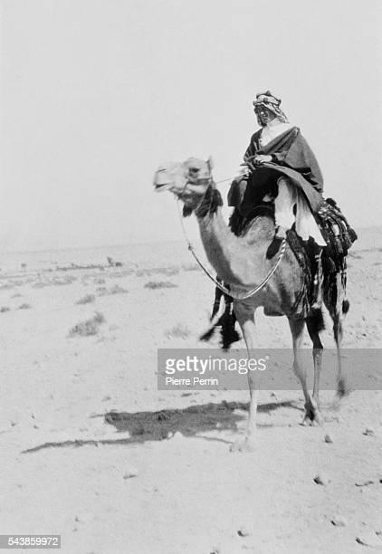 British Army officer Thomas Edward Lawrence, aka Lawrence of Arabia, mounted on his camel at Aquaba in present-day Jordan, during the Arab Revolt...