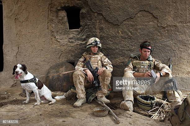 British Army soldier from the Royal Army Veterinary Corp Lcpl Marianne Hay 24 from Aberdeeenshire with her arms and explosives dog Leanna and the 2...