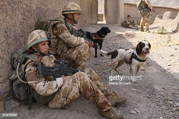 British Army Theatre Military Working Dog Support Unit Cpl Dave Heyhoe 38yearsold from Linconshire and his dog Treo and British Soldier from the...