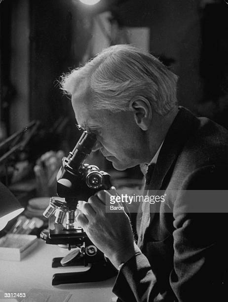 British bacteriologist and Nobel laureate Sir Alexander Fleming working with a microscope in his laboratory Fleming was born in Ayrshire and educated...