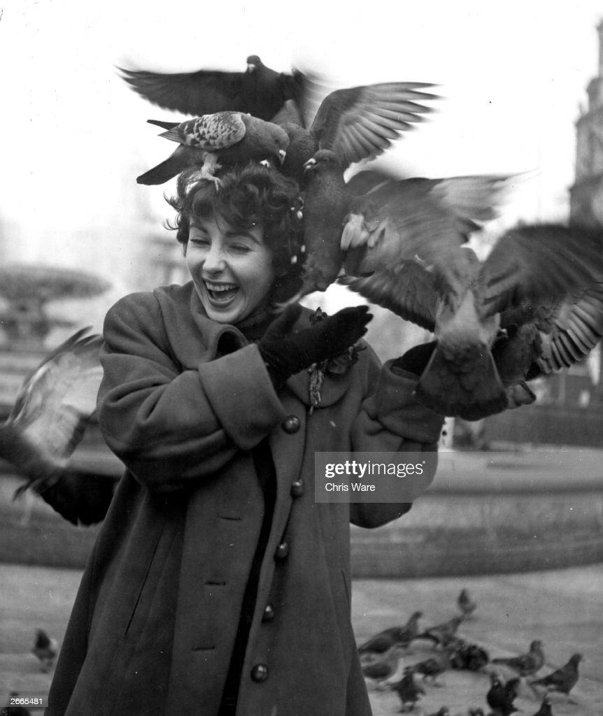 British born American actress Elizabeth Taylor feeding the pigeons in Trafalgar Square, London.