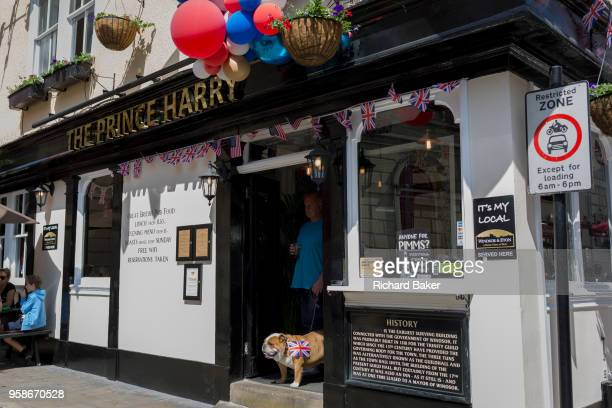 A British Bulldog with flags and balloons outside the Prince Harry pub in the old town of Windsor as it gets ready for the royal wedding between...