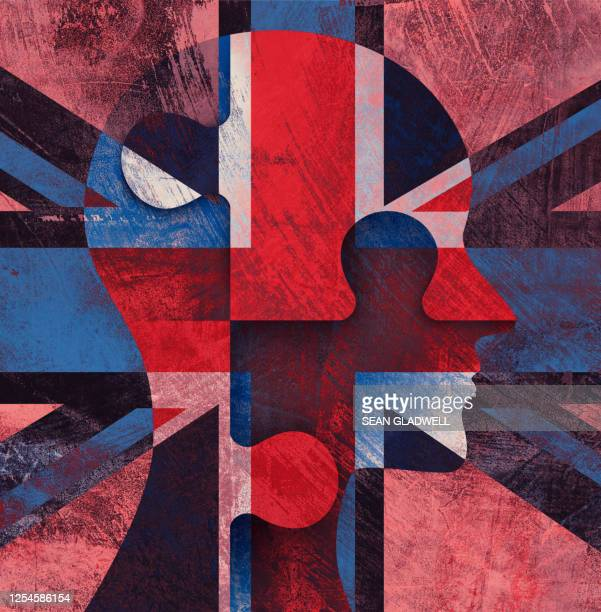 british citizenship - government stock pictures, royalty-free photos & images