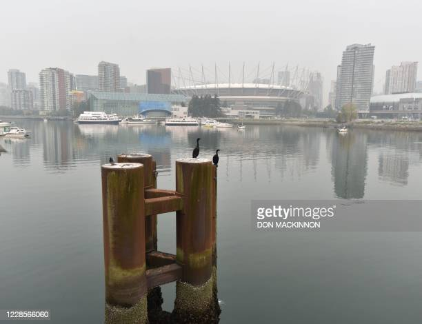 British Columbia Place Stadium and the Vancouver skyline are seen from False Creek in Vancouver Canada September 17 2020 South western British...