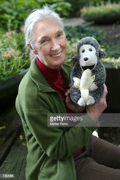 British environmentalist Jane Goodall poses for a portrait at the garden of Groningen University at the Sharing the Planet conference June 14 2002 in...