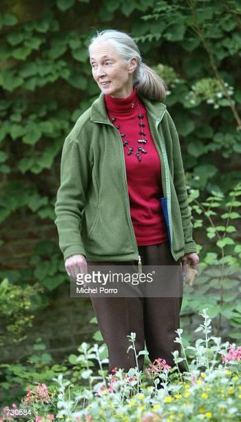 British environmentalist Jane Goodall walks in the garden of Groningen University at the Sharing the Planet conference June 14, 2002 in Groningen,...