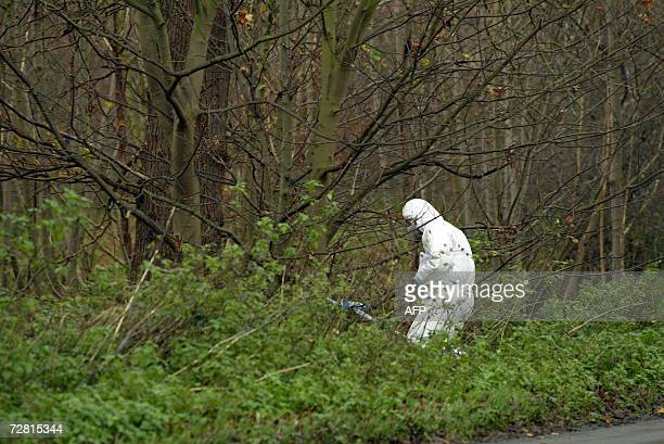 British forensic police work at a crime scene in Levington near Ipswich in Suffolk 13 December 2006 after two more bodies were discovered in woodland...
