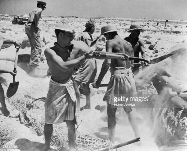 A British gun crew diggingin during an artillery battle in the Western Desert of North Africa 1942