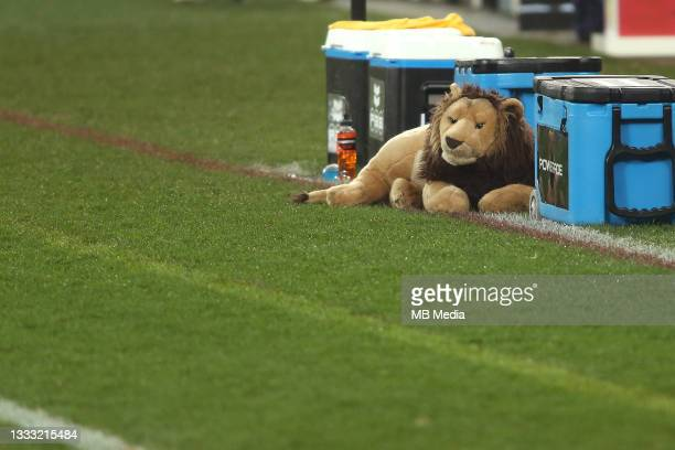 British & Irish Lions team mascot BIL during the 3rd Test between South Africa and the British & Irish Lions at FNB Stadium on August 7, 2021 in...