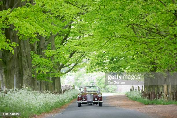British made Alvis TD21 classic car motoring along an avenue of trees in a country lane in Asthall, The Cotswolds, England.