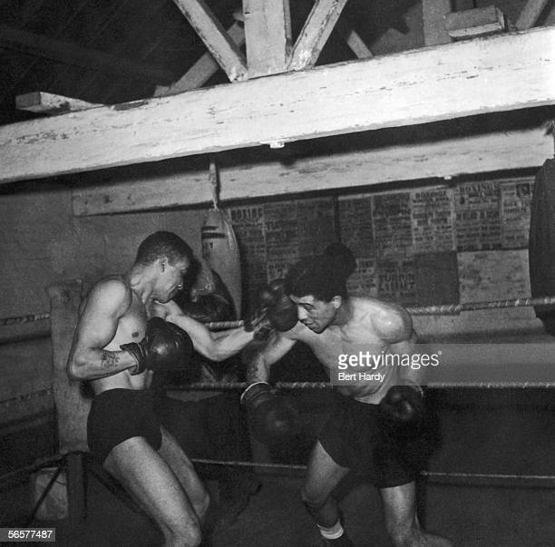 British middleweight boxing champion Randolph Turpin spars with his brother Dick also a middleweight champ 10th December 1949