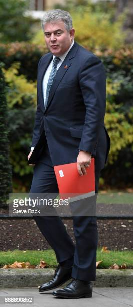 British Minister of State for Immigration Brandon Lewis in Downing Street on 31st October 2017 in London England