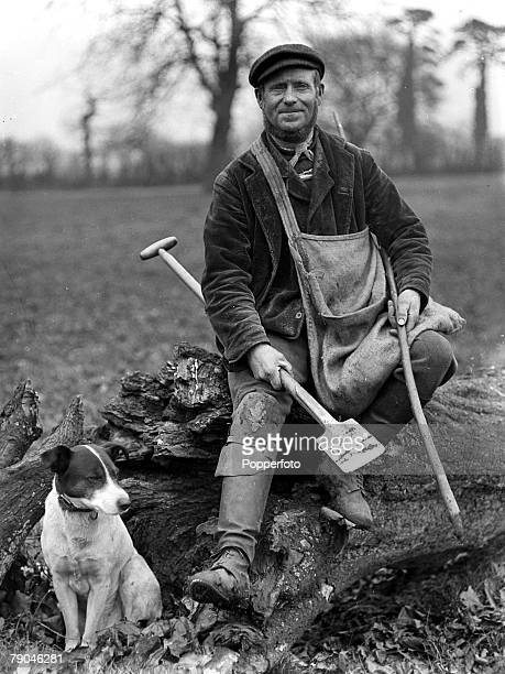 circa 1940's Great Britain A mole catcher with his dog and some of the tools of his trade Moles are subterranean creatures related to the shrew...