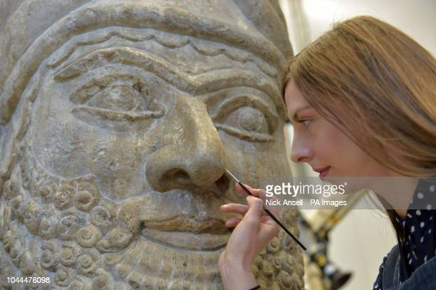 British Museum stone conservator Kasia Weglowska prepares a head of an Assyrian winged bull from the palace of Ashurbanipal's father Esarhaddon at...