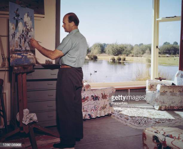 British ornithologist conservationist and painter Peter Scott paints a scene of birds in flight in his studio at Slimbridge Reserve in...