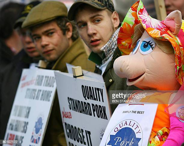British pig farmers hold a demonstration outside Downing Street in central London on March 4 2008 Hundreds of pig farmers demonstrated in Westminster...