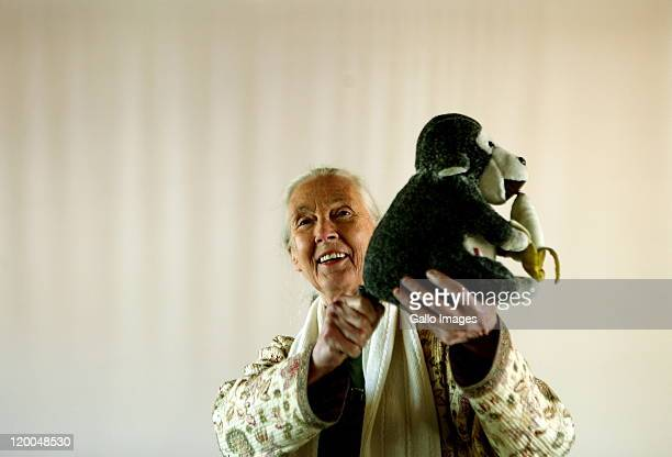 British primatologist and animal activist Jane Goodall holds up a stuffed chimpanzee toy at the Johannesburg Zoo on July 28 2011 in Johannesburg...