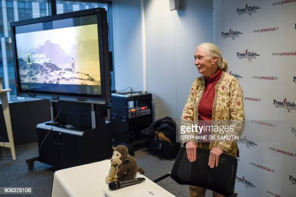 British primatologist and UN peace ambassador Jane Goodall the world's famous authority on chimpanzees attends a press conference on January 18 2018...