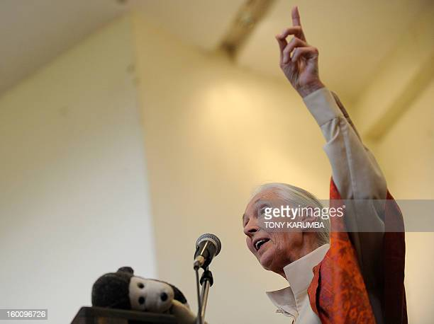 British primatologist Dr Jane Goodall delivers a speech during a presentation at the National Museum on January 26 2013 in Nairobi The Great Apes...