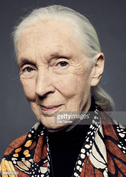 British primatologist ethologist anthropologist and UN Messenger of Peace Jane Goodall of the film 'Jane' poses for a portrait at the 55th New York...