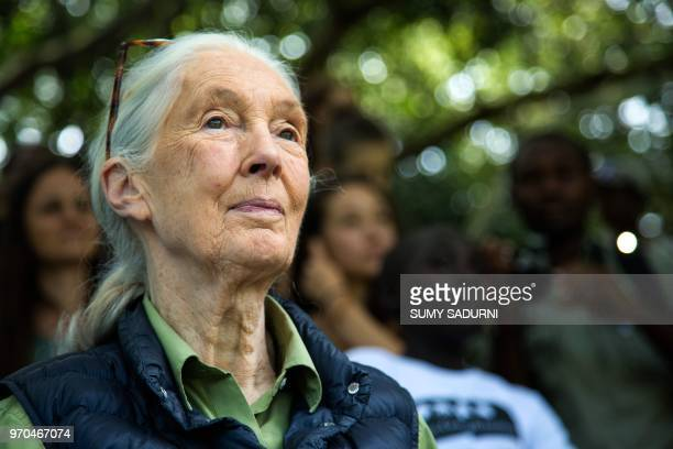British primatologist Jane Goodall is pictured during a visit to the chimp rescue center on June 9 2018 in Entebbe Uganda During her visit at the...