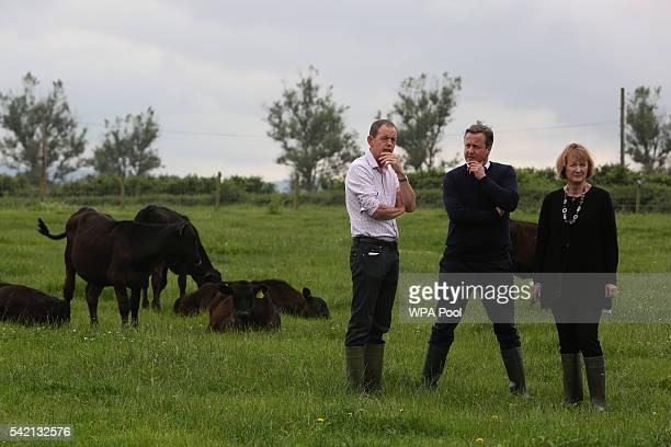British Prime Minister David Cameron and Labour's Harriet Harman talk with farmer David Christensen on his farm at Kingston Hill Farm on June 22 2016...