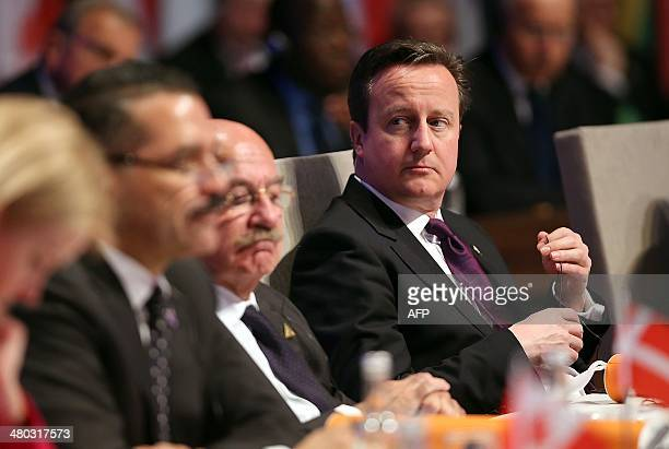 British Prime Minister David Cameron attends the opening session of the Nuclear Security Summit in The Hague on March 24 2014 AFP PHOTO/POOL/SEAN...