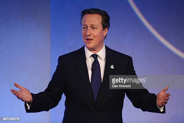 British Prime Minister David Cameron speaks to members of 'Age UK' during their election rally at the Queen Elizabeth II centre on March 24 2015 in...