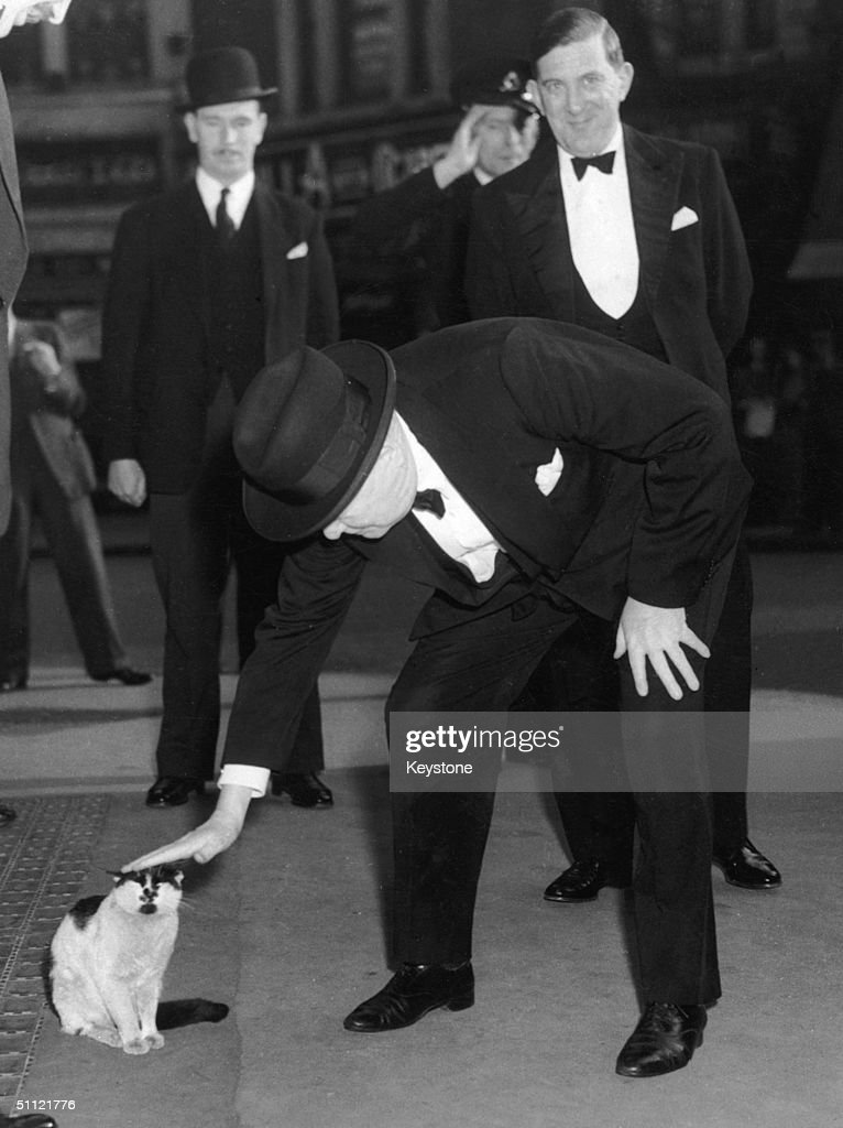 British prime minister Winston Churchill (1874 - 1965) stops to pet a cat at Liverpool Street Station, 24th May 1952.