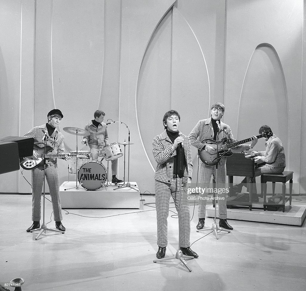 Image of: Band British Rock Group The Animals Perform In Matching Checkered Suits On An Episode Of the Getty Images The Animals Band Pictures And Photos