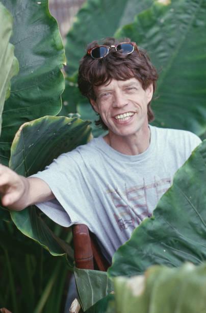 Jagger On Holiday Wall Art