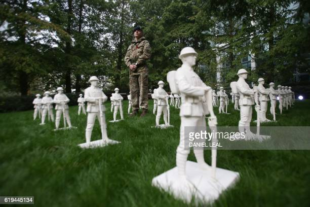 British Royal Engineers Sapper Liam Robertson poses for a picture in the middle of an art installation called 'Lost Armies' created by artist Mark...