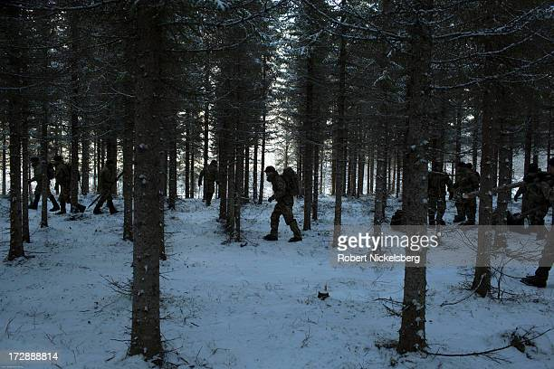 British Royal Marines receive look for branches to construct shelters during survival exercises March 4 2013 at the Allied Arctic Training Center in...