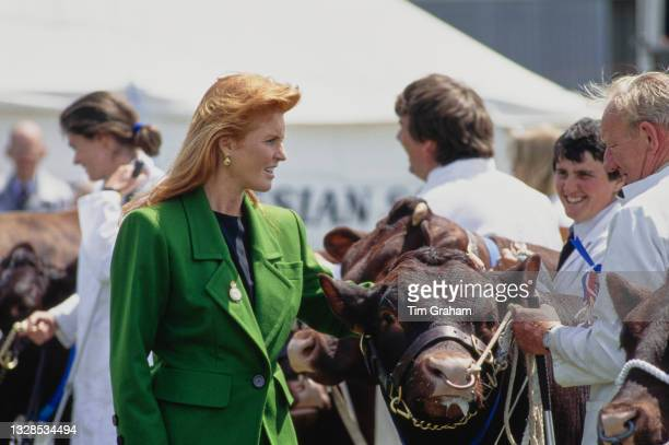 British Royal Sarah, Duchess of York, wearing an emerald green coat, inspects cattle on show at the South of England Show, an agricultural fair in...