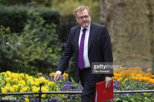 British Scotland Secretary David Mundell arrives for a cabinet meeting at 10 Downing Street on March 29 2017 in London England Later today British...