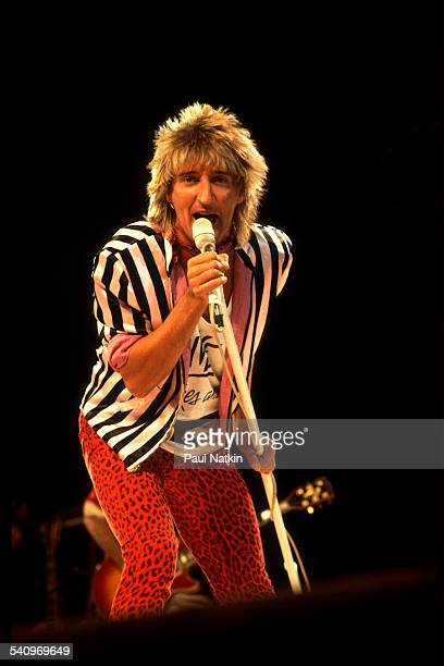 British singer Rod Stewart performs onstage at the Rosemont Horizon Rosemont Illinois January 12 1982