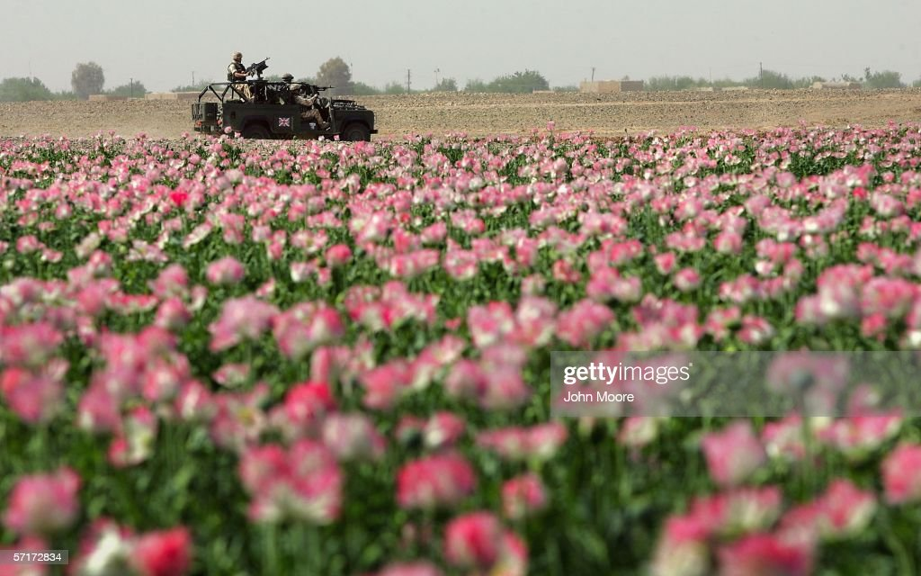 British Troops Secure Helmand Province In Southern Afghanistan : Nachrichtenfoto