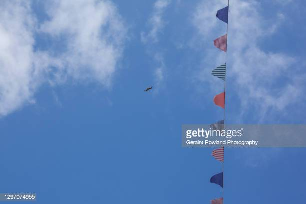 british summertime - film festival stock pictures, royalty-free photos & images