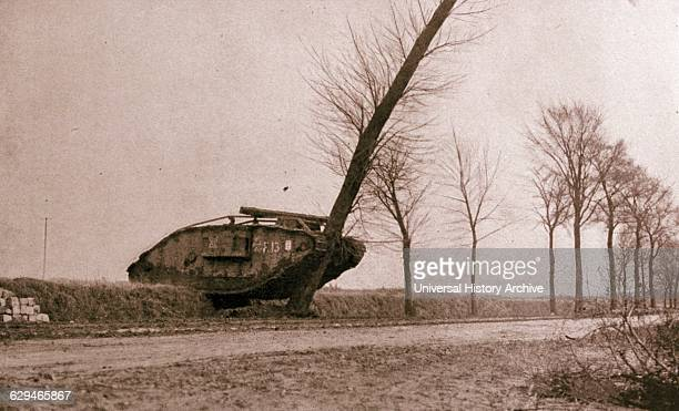 British tank destroys a tree en route to the battle of Cambrai during World war One 1917 The Battle of Cambrai was a British military offensive that...