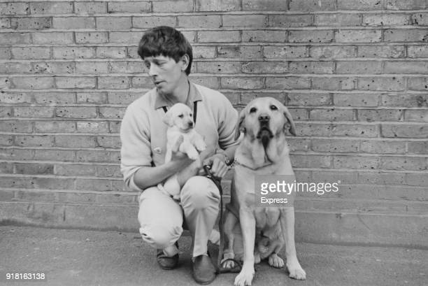 British television presenter John Noakes with an adult guide dog Labrador and a puppy which will be trained to become a guide dog for the blinds 4th...