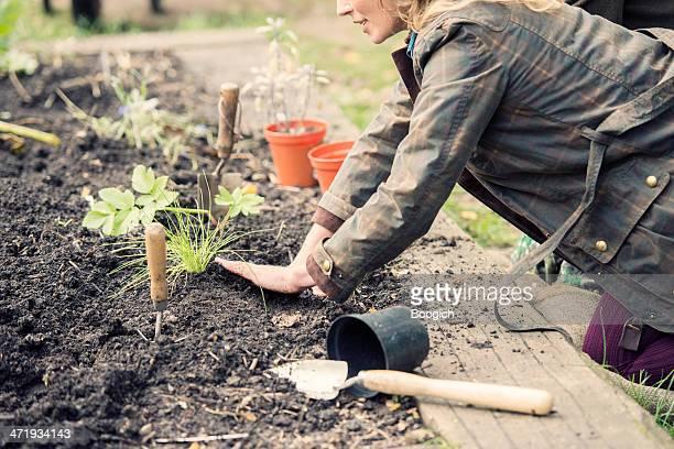 Britische Frau Gartenbau