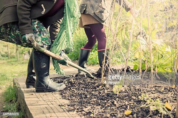 British Women Digging in London Community Garden