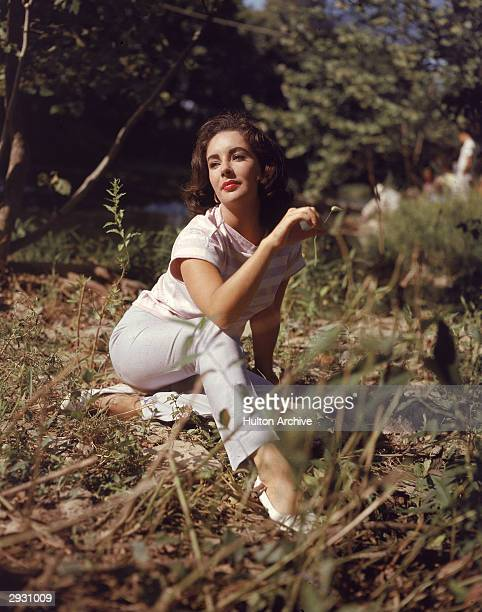 British-born actor Elizabeth Taylor sits in a field and twirls a blade of grass in her right hand, circa 1950s.