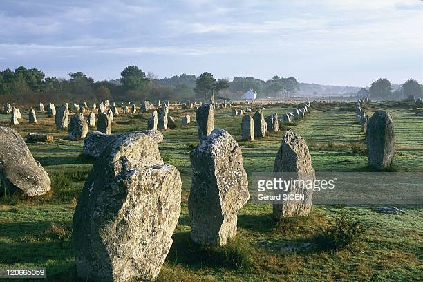 Brittany Carnac France The stone rows of Menec