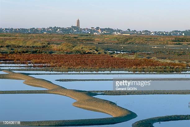 Brittany plural and singular in Batz Sur Mer France Guerande salt marshes with BatzsurMer in the background G