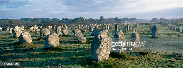 Brittany plural and singular in Carnac France Carnac the rows in the rising sun