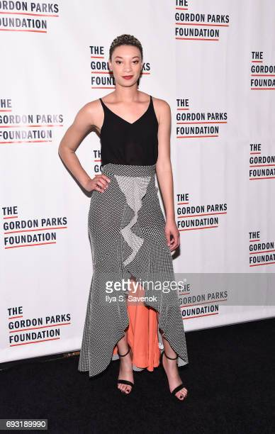 Brittni Jessie attends the 2017 Gordon Parks Foundation Awards Gala at Cipriani 42nd Street on June 6 2017 in New York City