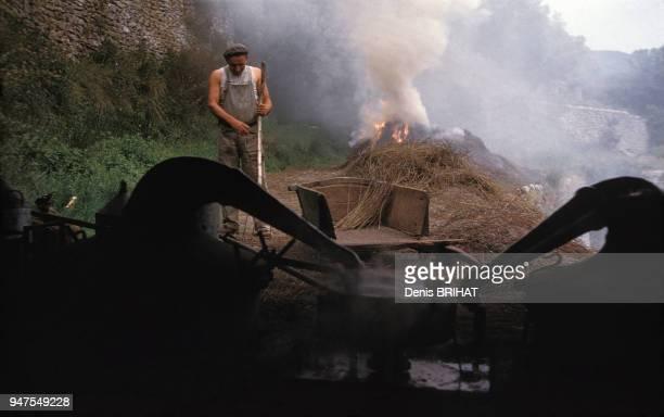 Brûlage du lavandin dans une distillerie de lavande en Provence France
