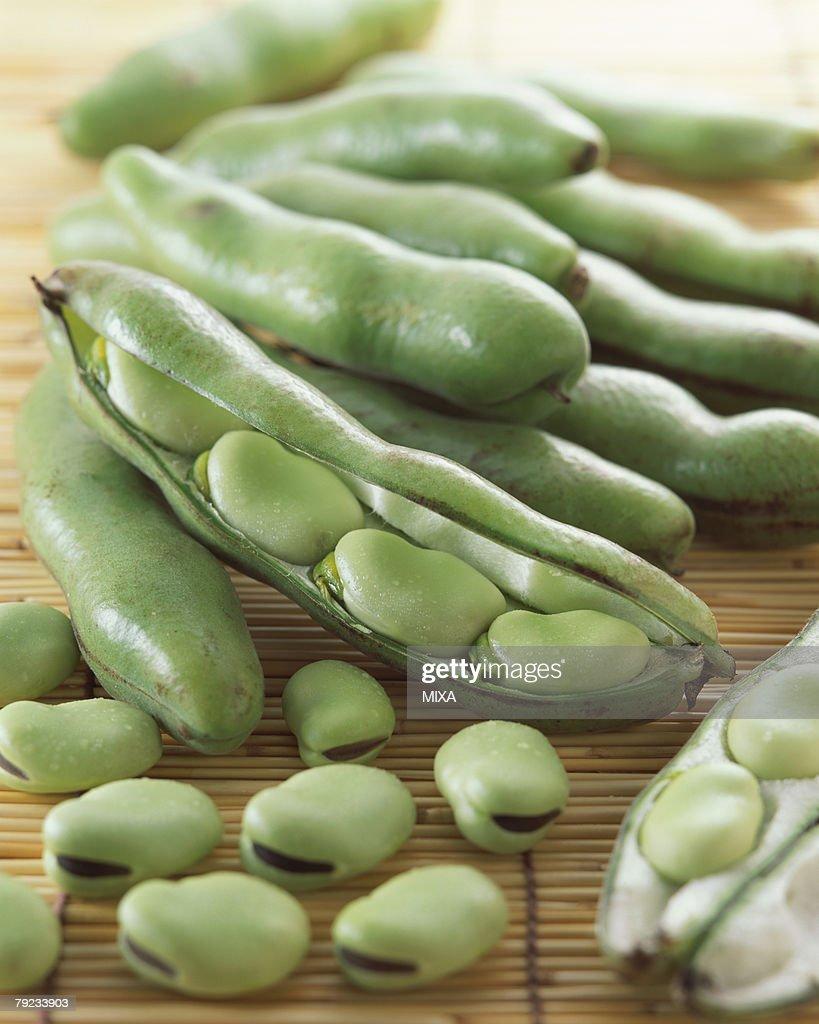 Broad bean : Stock Photo